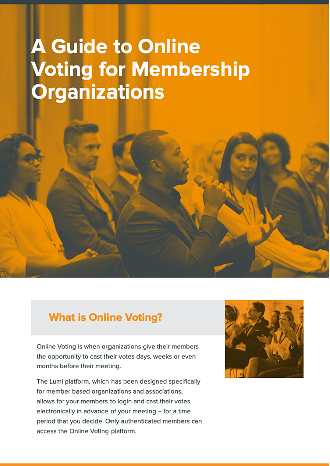 Introducing online voting infographic-2